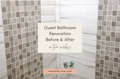 guest bathroom renovation